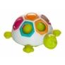 Kép 1/3 - Első színegyeztető teknősöm - Fat Brain Toys